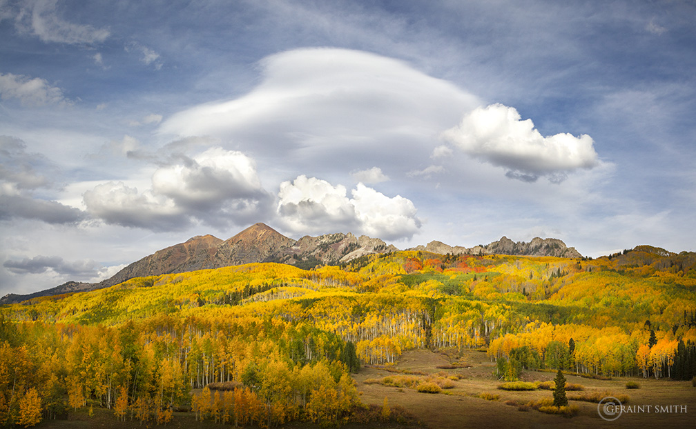 Aspens, Crested Butte, Colorado,