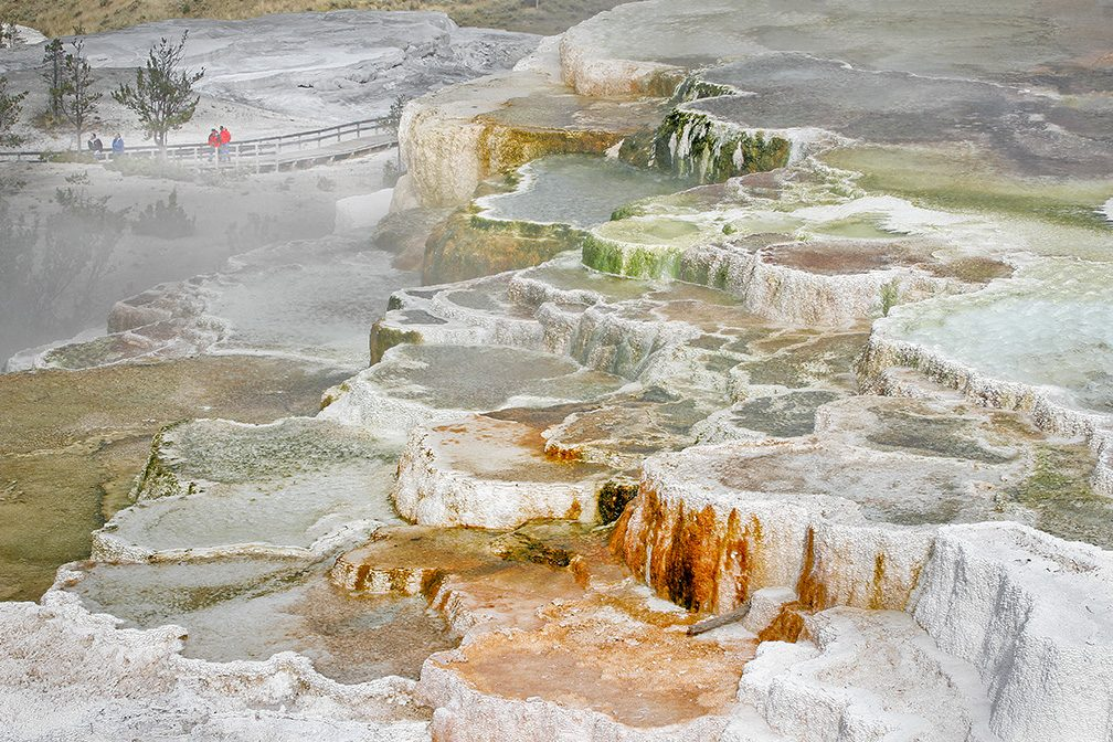 Yellowstone Revisited, Mammoth Hot Springs, WY