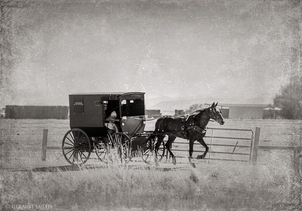 Amish Horse Drawn Buggy, Monte Vista, Colorado