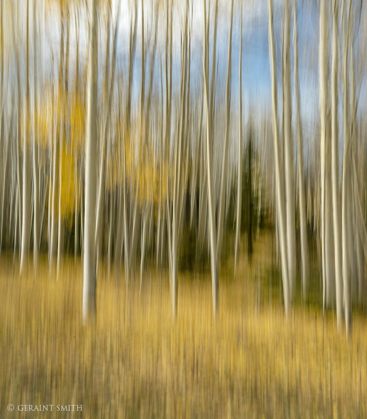 aspen_blur_hopewell_lake_1057-1477688