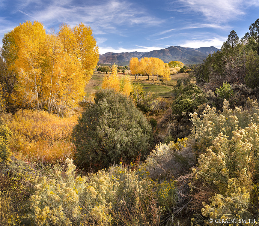 Fall Color,San C ristobal Valley, New Mexico.