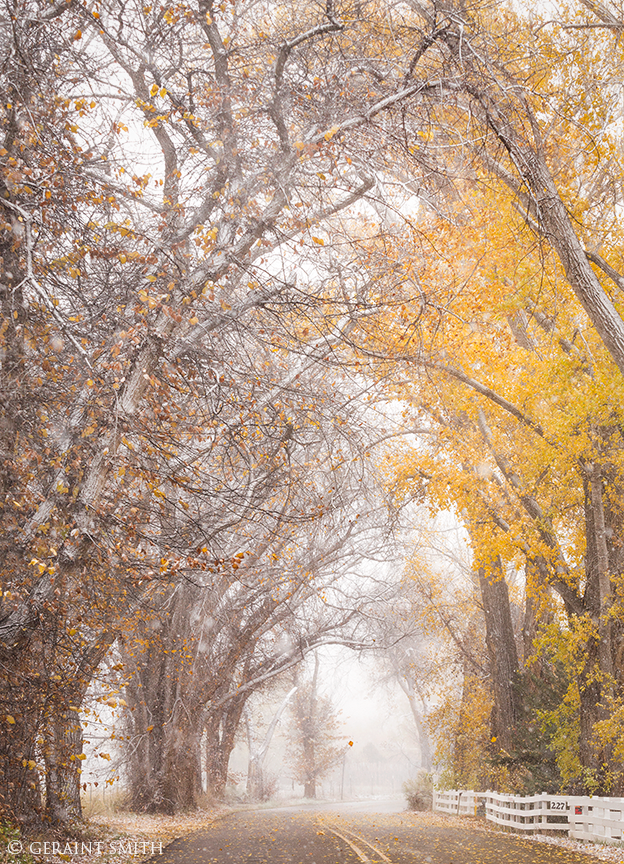 Early Winter Greets Fall, Taos, New Mexico