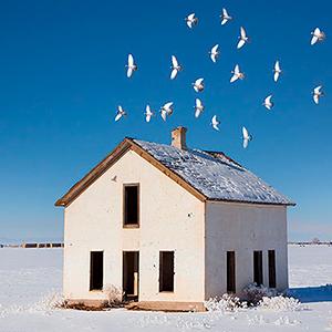 2014 white house doves 1181