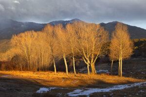 San Cristobal Valley Mid Winter