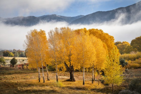 San Cristobal Valley, Fall