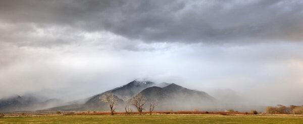 Taos Mountain Mists