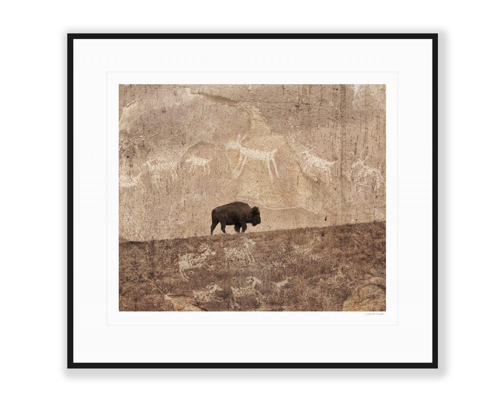 "Bison Petroglyph print ""Moving Through Time"""